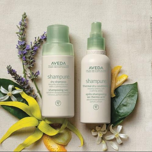 Dry Shampoo & Conditioners